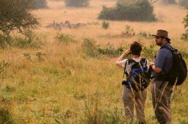 11 days wildlife Uganda safari best Holiday tour