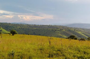 2 days Akagera National Park Rwanda