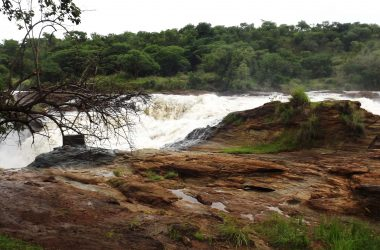 3 day Murchison falls Uganda Safari