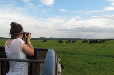 9 Days wildlife Kibale Bwindi Bunyonyi Murchison