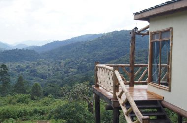 bwindi-gorilla-havens-lodge