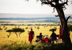 4 days Masai Mara and Lake Nakuru Kenya Safari