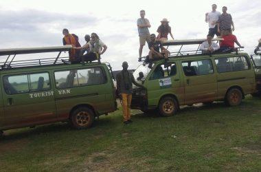 7 days Best of western Uganda Holiday Safari
