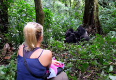 3-days-Gorilla-Habituation-Bwindi-Impenetrable-forest
