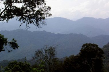 What to do and see in virunga Mountain Ranges
