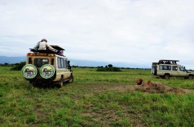 5 days Uganda Safari, Chimpanzee tracking, Queen Elizabeth National Park