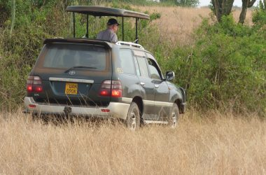 9 days Uganda Safari with rhinos, wildlife &primate tracking