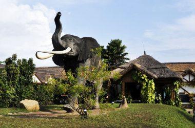 Primate lodge Kibale National Park
