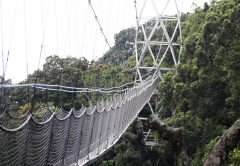 3 days Nyungwe forest National Park